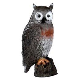 3D Tier Franzbogen Waldkauz