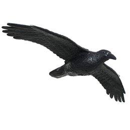3D Tier Franzbogen Rabe, Fliegend