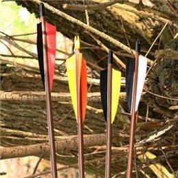 Standard Holzpfeil mit 3 x einfarbige Federn