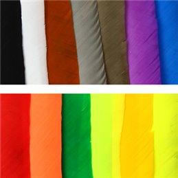 4 Zoll Shield-Naturfeder Einfarbig RW