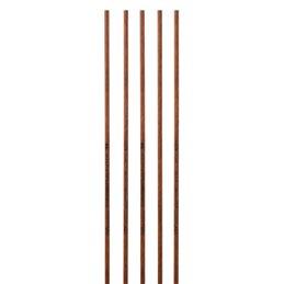 Penthalon TimberStick Carbon Schaft