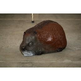 3D Tier Franzbogen Igel Premiumschaum